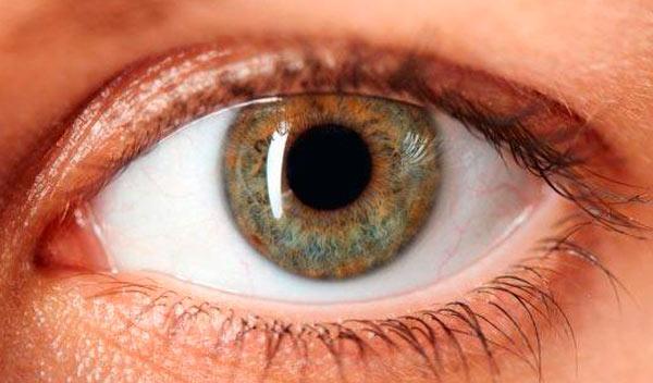 Enfermedades Oculares derivadas de la Diabetes